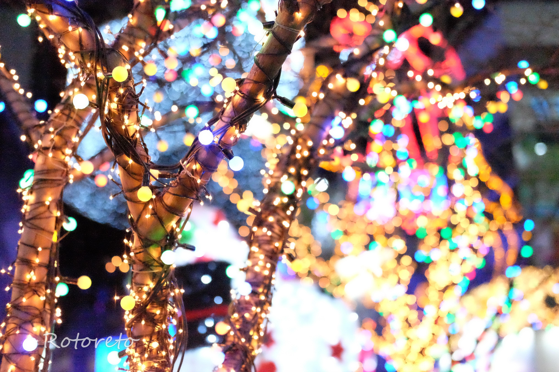 韓国・釜山7【女一人旅】季節限定?光復路のイルミネーション(2016年冬)