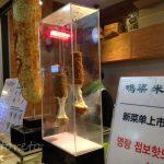 韓国・釜山9【女一人旅】新韓国グルメ?チーズが伸~びるミョンラン・ハッドグ(2016年冬)