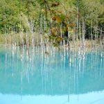 【北海道・美瑛/斜里郡】穴場スポット!青い池より神秘的?神の子池の透明度に感動
