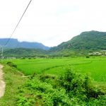 【ベトナム・マイチャウ】少数民族が暮らす田園風景が広がる田舎町へ