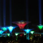 【シンガポール旅記録6/女一人旅】ガーデンズ・バイ・ザ・ベイの夜景が予想以上に幻想的だった(2017年GW)