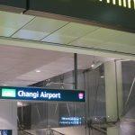 【シンガポール観光2/女一人旅】チャンギ国際空港から市内への移動(2017年GW)
