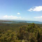 【ニュージーランド・オークランド】シティから気軽に行ける!私がおススメしたい絶景スポット5選~ランギトト島(Rangitoto Island)~