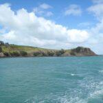 【ニュージーランド・オークランド】シティから気軽に行ける!私がおススメしたい絶景スポット5選~ワイヘキ島(Waiheke Island)~