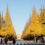 【東京】12月でも紅葉?神宮外苑いちょう並木を見に行ってきた!