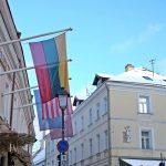 【リトアニア・ヴィリニュス・シャウレイ/ 女一人旅】独立100周年!国旗の色で染まる街(2018年2月)