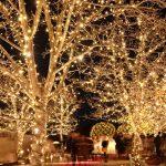 【東京】今年もシャンデリア健在!恵比寿ガーデンプレイスのイルミネーション!!(2018年)