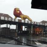 【栃木県】雨にも負けず!那須サファリパークで動物とふれあい旅~サファリウォーク編~(2020年10月)