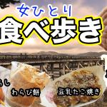 【大阪・女一人旅】嵐山で和スイーツ食べ歩き!(2020年12月)