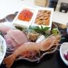 【千葉県鴨川市】こんなにいいんですか?!ウニ、イクラ一箱どーんっと贅沢な定食(20