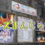 【宮崎・高千穂】女一人旅!種類豊富!!名物「チーズまんじゅう」って何?(2021年3月)