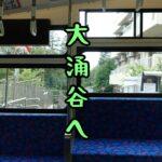 【神奈川県・箱根#2】ケーブルカーとロープウェイに乗って大涌谷へ!【女ひとり旅】(2021年9月)